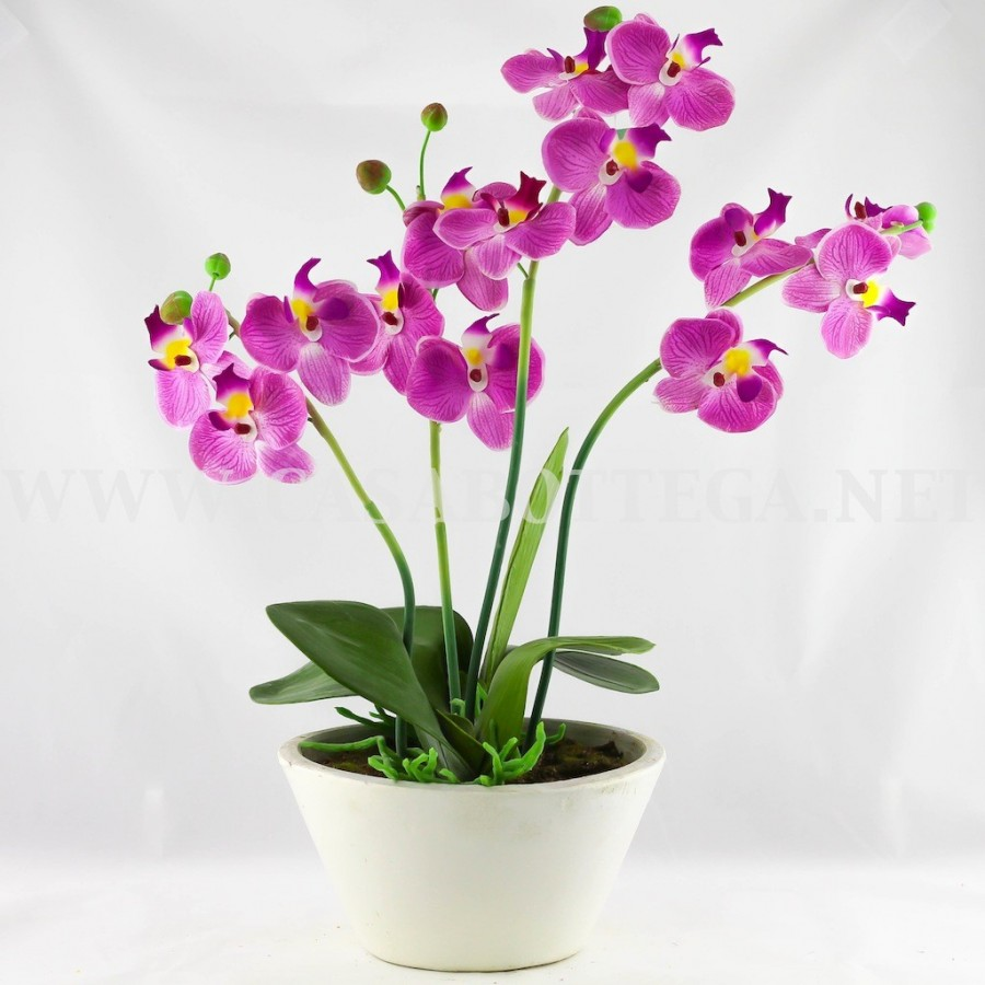 Orchidea in seta con vaso bianco ebay for Vasi per orchidee ikea