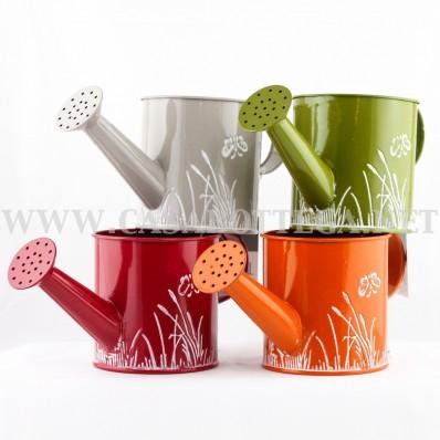 Latta innafiatoio colorato - contenitore e porta piante